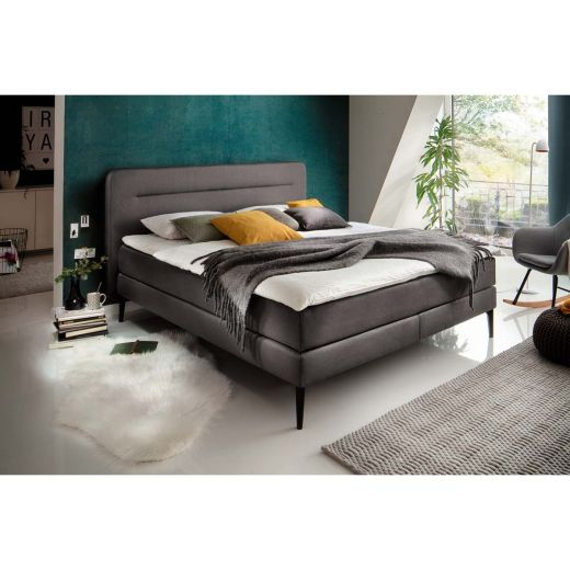 meise m bel massello boxspringbett anthrazit mit lieferung. Black Bedroom Furniture Sets. Home Design Ideas